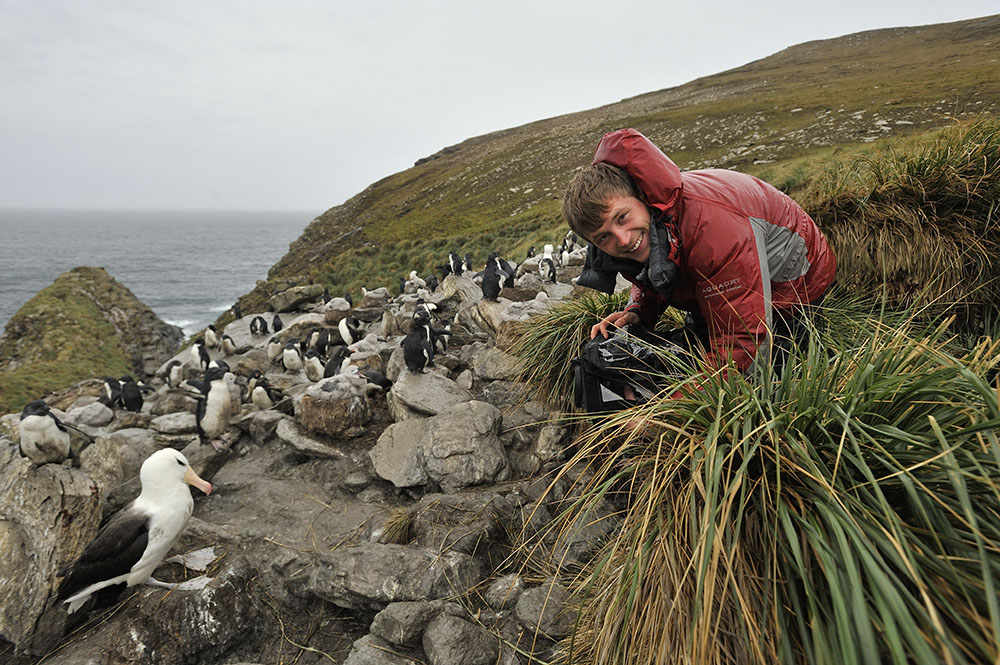 Filming Black-browed Albatross and Penguin colonies on West Falkland